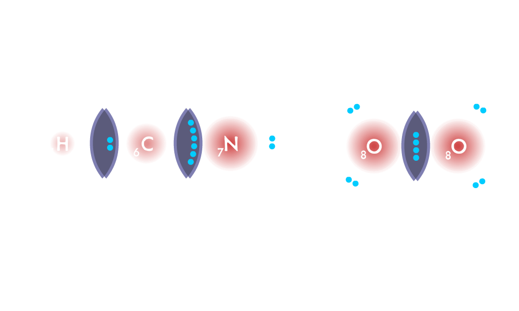 Covalent Bonding game - an HCN molecule is formed with a single bond and a triple bond. O2 is formed with a double bond.