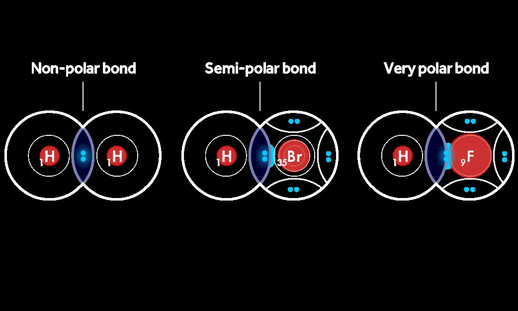 Covalent Bonding game - H2 has a non-polar bond, HBr has a semi-polar bond, and HF has a very polar bond.